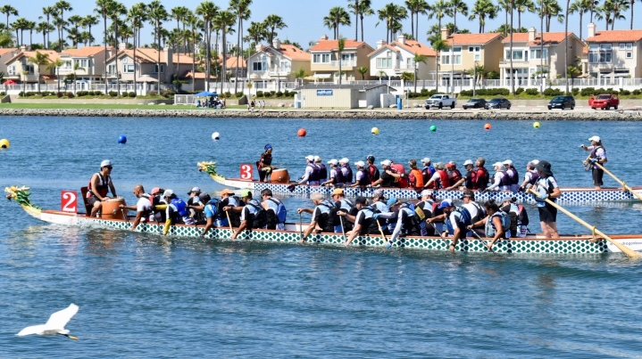 Sports Photography at the Long Beach Dragon Boat Festival